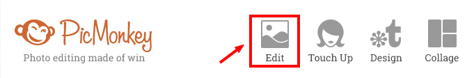 Using Picmonkey to add watermarks