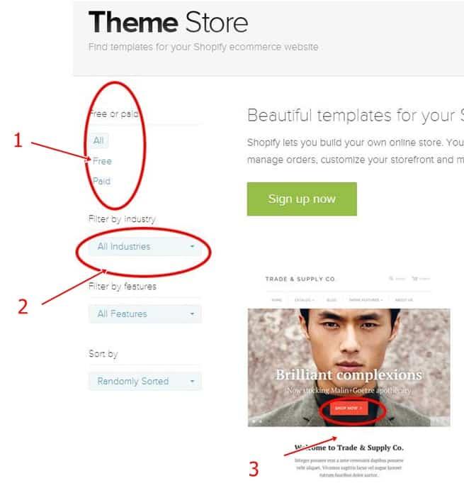 Theme Store example
