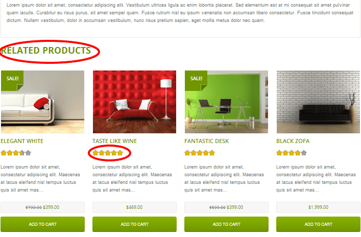 Shopific Product Page2