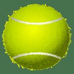 Tennis Ball Favicon