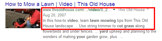Google Search Example 1