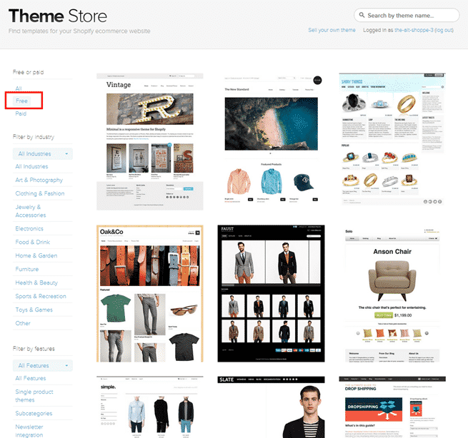Theme options in Shopify