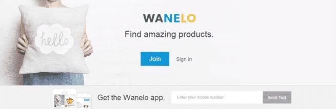 Wanelo Homepage