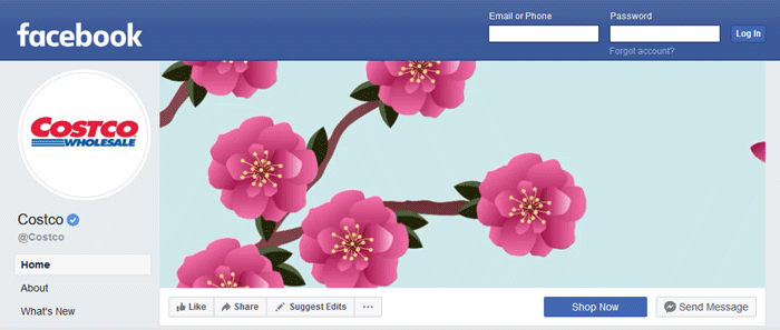 screenshot of Costco facebook fan page