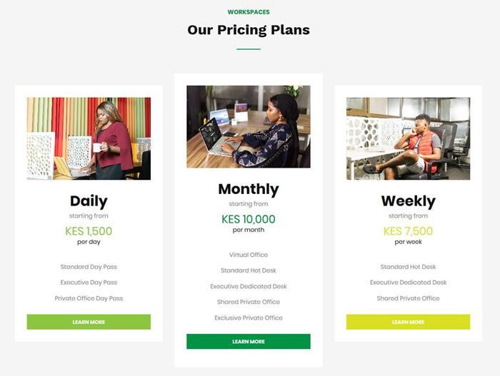The Mint Hub pricing screenshot