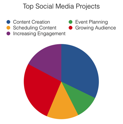 Pie chart of top social media projects