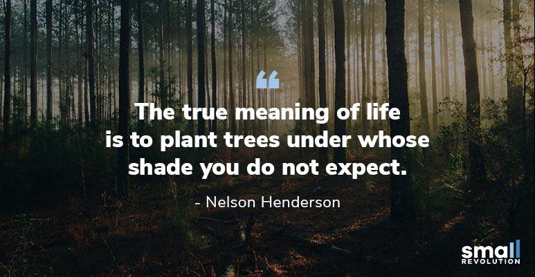 Nelson Henderson inspirational quote
