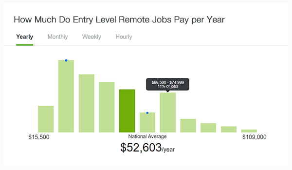 How much do entry level remote jobs pay per year.